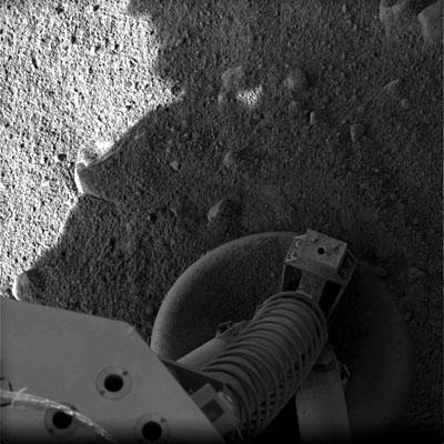 Phoenix sur Mars